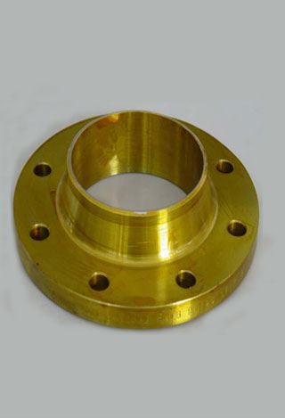 Cu Ni 90/10 Forged Flanges